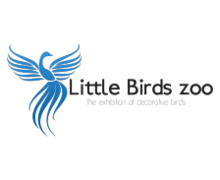 Little Birds Zoo Logaster logo